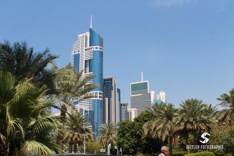 20140202_Dubaj_JoannaRutkoSeitler_028
