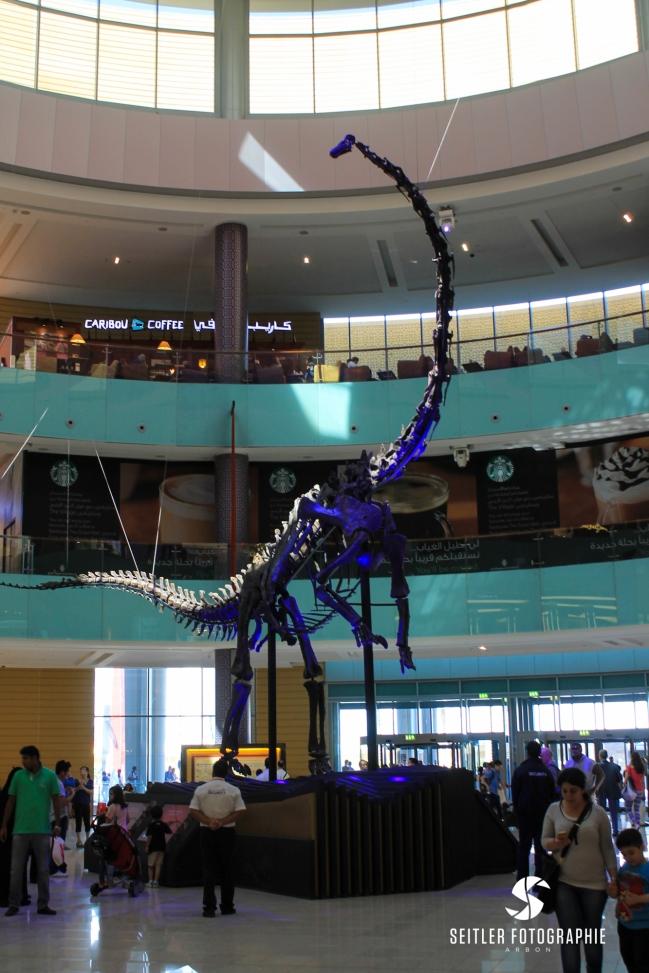 20140202_Dubaj_JoannaRutkoSeitler_029