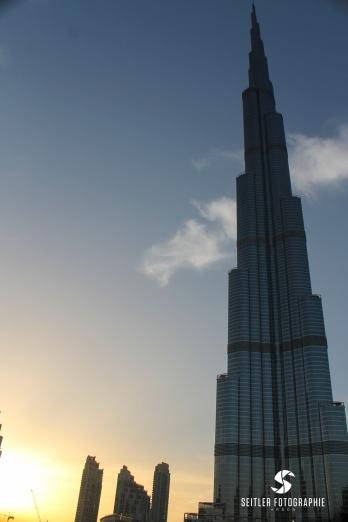 20140202_Dubaj_JoannaRutkoSeitler_033