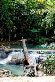 20140202_Thailand_JoannaRutkoSeitler_003