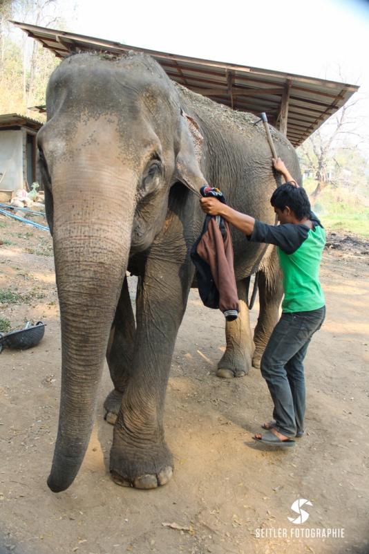 20140202_Thailand_JoannaRutkoSeitler_009
