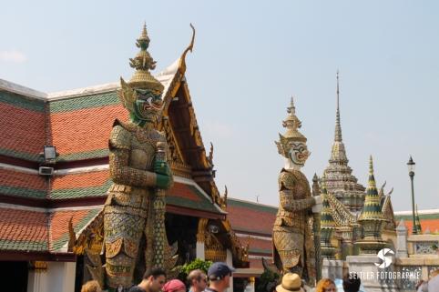 20140202_Thailand_JoannaRutkoSeitler_012
