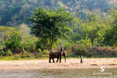 20140202_Thailand_JoannaRutkoSeitler_014